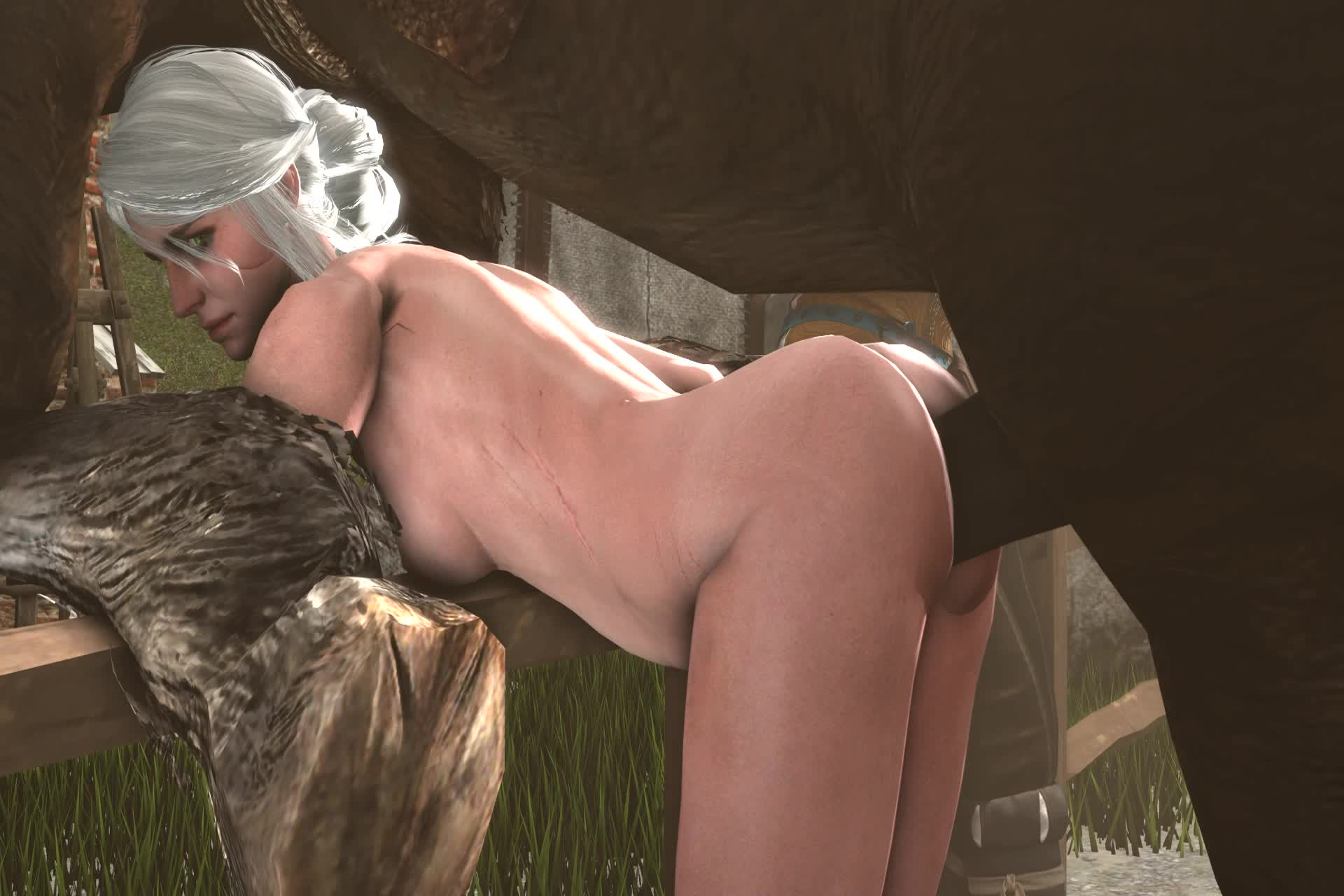 3D Animated Ciri Source_Filmmaker The_Witcher The_Witcher_3:_Wild_Hunt blueberg // 1920x1280 // 2.0MB // webm
