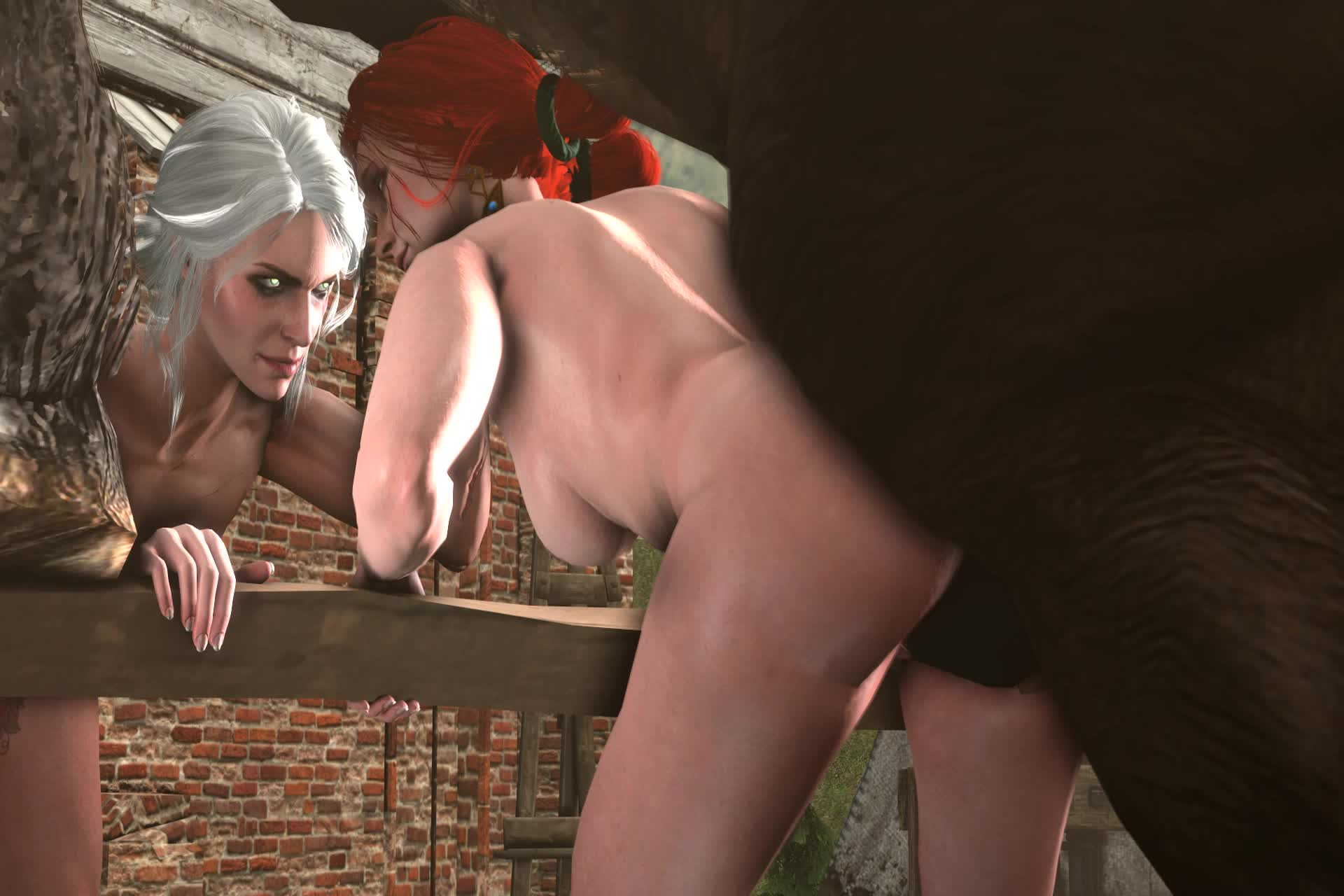 3D Animated Ciri Source_Filmmaker The_Witcher The_Witcher_3:_Wild_Hunt Triss_Merigold blueberg // 1920x1280 // 1.9MB // webm